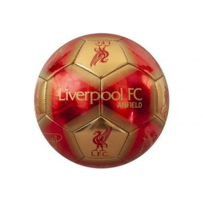 Ливерпуль Футбольный мини-мяч Signature