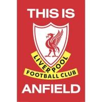 Ливерпуль Плакат TIA 29